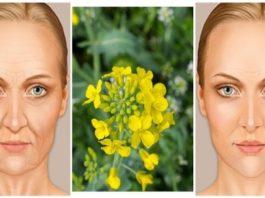 Известный эликсир, который вы должны попробовать: удаляет от 10 до 20 лет с вашего лица