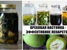 Лекарство из зеленых грецких орехов для улучшения зрения, лечения щитовидки, ангины и общего оздоровления организма