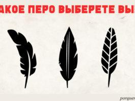 Выберите перо, которое вам нравится, — и мы узнаем, в чем ваша уникальность!