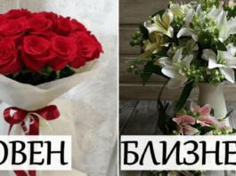 Какие цветы подходят каждому знаку Зодиака