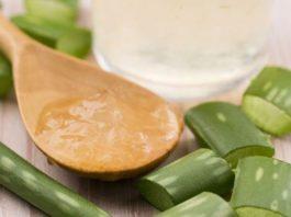 Благодаря этому рецепту из алоэ, у вас уже через 3 дня будет обновленная кожа!