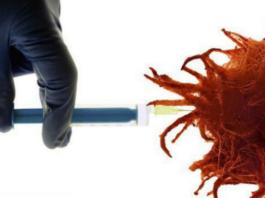 Как и чем уничтожить раковые клетки?