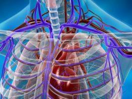 Эти упражнения всего за 7 минут избавят вас от проблемы плохого кровообращения! Позаботьтесь о своем здоровье!