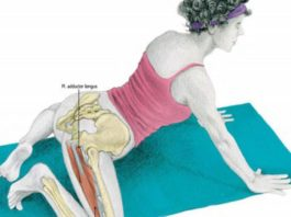 Упражнение ЛЯГУШКА: 4 вида для растяжки ног, пресса и ягодиц