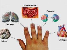 Я даже не задумывался, что каждый палец руки связан с двумя органами! Лечимся за 5 минут по-японски!