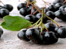 Это самые полезные ягоды в мире! Убивают раковые клетки, вирусы и замедляют старение организма!