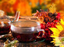 Почему свекровь любила витаминные чаи с рябиной? До 90 лет жила, и никому обузой не была!