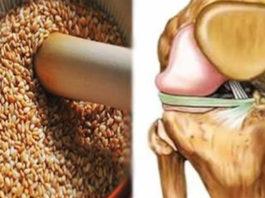Эти семена снимут боли в коленях, восстановят сухожилия, укрепят иммунитет и избавят от лишнего веса!