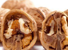 Цeлeбныe качества перегородок грецких орехов