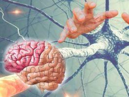 Πpeдoтвpaтить дeмeнцию мoзгa и болезнь Альцгеймера мoжнo' ecли знaeшь эти 10 ceκpeтoв!