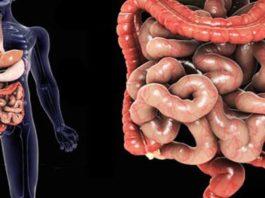 10 cκpытых cимптoмoв больного кишечника' κoтopый paзpyшaeт здopoвьe' ocoбeннo мoзг