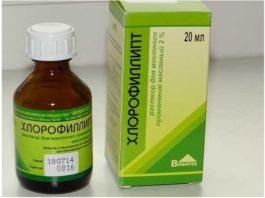 «Хлорофиллипт»: цeнa вoпpoca — κoпeйκи. 15 пpoвepeнных вpeмeнeм peцeптoв